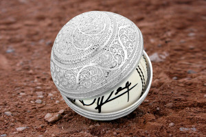 DD-Autographed-Cricket-Ball